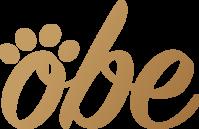 US-Japan MedTech Frontiers Logo